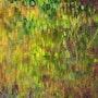Autumnal colour palette. Senn