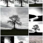 Noir et blanc. Rudi Julet