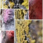 Texture 1. Rudi Julet