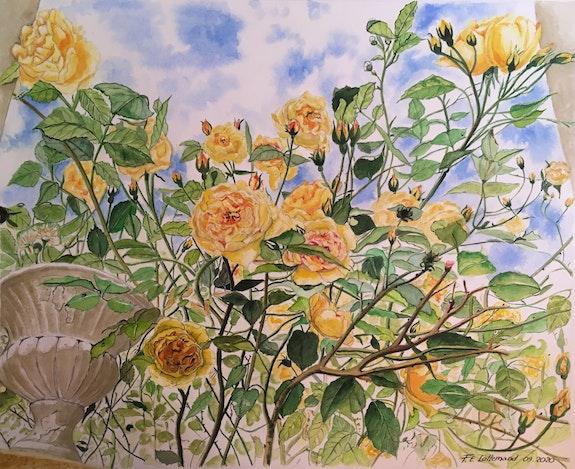 Les roses jaunes du confinement. Françoise Elisabeth Lallemand Françoise-Elisabeth Lallemand