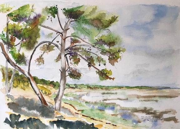 Un pin de Bonne Ansa. Alain Croset Le Trembladais Alain Croset
