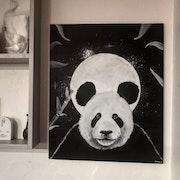 La sagesse du panda. Damien Carret
