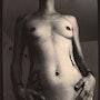 Femme nue, selphy, noir et blanc, argentique, caffenol. Lestat