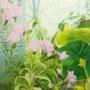 My garden 1. Susan Gillham