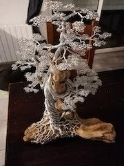 Bonsaï fil aluminium, bois flotté. Michel De Salengre