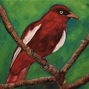Peinture oiseau sur toile, original et unique Signe Joky Kamo.