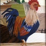 Maitre Coq. Martine Perry