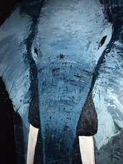 Elefante nocturno. José Serrano