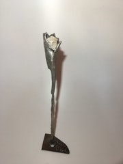 Fleur de pierre. Michel Sidobre