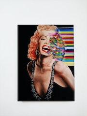 Marilyn Monroe. Zaf Ucar