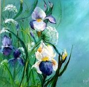 Champ d iris et ombellifères. Monique Martin