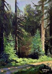 Forêt Noire environs de Baiersbronn.