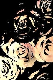 Rose, noir, blanc…. Angélina Moine