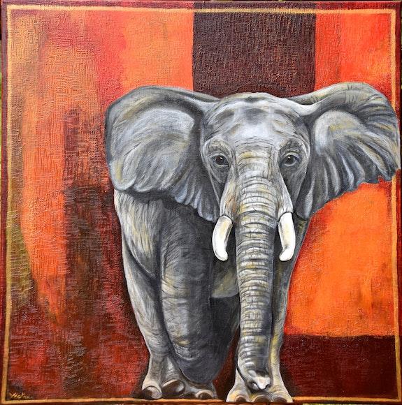 Éléphant d'Afrique african elephant. Valérie Mortier Valérie Mortier
