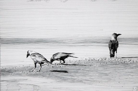 3 Corneilles sur la plage. Gérard Valluet