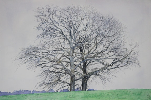 Two Oaks in winter. Gérard Valluet Gérard Valluet