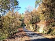 Una de las bonitas carreteras en Galicia.