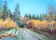 Dans Les bois de Jalhay.