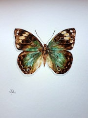 Butterfly made of soil. Sara Ashouri