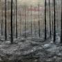 Desolación. Oleo sobre lienzo.. Demonio - Yolanda Molina Brañas