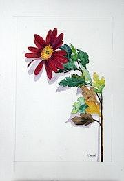 Fleur 1. Patrice Manuel