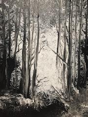 Balade en Forêt. Mag