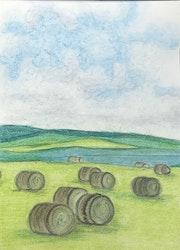 Haystack Rolls. Ireland. Anu Gujral
