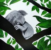 Bebé koala.