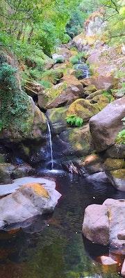 Naturaleza. M. Pilar