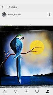 Perroquet. Samir Saidi