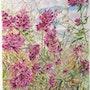 Salvia Canariensis ou sauge. Françoise-Elisabeth Lallemand