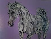 «Shades of grey» aka, a grey horse. Stefano Corbani