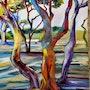 Les arbres du jardin de la fontaine. Catherine Maury