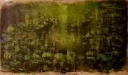 Ninfas de Monet. Carolina Ferragut Louis