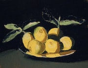 Nature morte aux citrons.