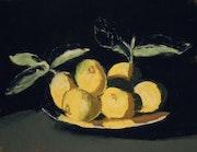 Nature morte aux citrons. Flora De Negroni