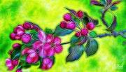 Цветы 0131.