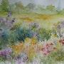 Multifleurs dans un champ. Edith Driffort