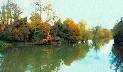 Lirón en otoño. Raymond Marcel Depienne