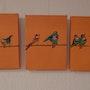 3 fotos pequeñas aves de color. Gerlinde Bawendi