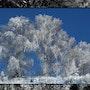 La blancura del comienzo del invierno. Gilles Cornière