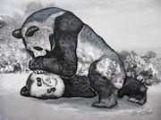 Los pandas - El amor fraternal.