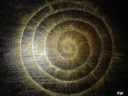 Spiral of Light. Valerie