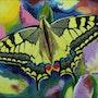 Schwalbenschwanz (Papilio machaon). Elvi Soretire-Steinmann