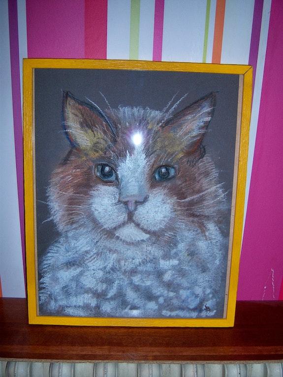 Porträt der Katze. Joelle Fossard Joelle Fossard