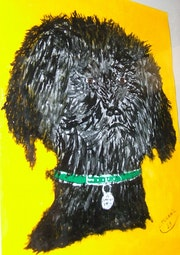 Mon premier chien Cadbury.