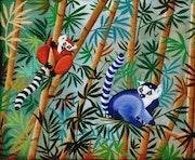 Lémuriens sauvages de Madagascar.