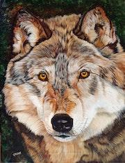 Wolf Portrait.