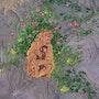 Der mütterliche Instinkt (Messer-Malerei Acryl). Ghislaine Phelut