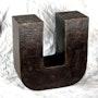 U. Este trabajo forma parte de una exposición itinerante Primer. Sculpteur / Tauzia Jean-Pierre